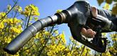 El BOE  nº 96 de 21/4/2012 aclara el sector del biodiésel español