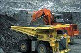 La minera brasileña Vale, producira biodiesel de palma en la Amazonia