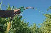 Argentina aumenta la cuota de porcentaje de biodiesel en gasoil por la caida de la exportacion