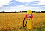 El proyecto de directiva de biocarburantes a examen