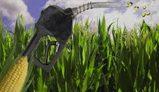 APPA critica el recorte del Gobierno en el objetivo de biocarburantes