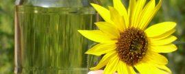Se formaliza la reducción del uso de biocarburantes en España