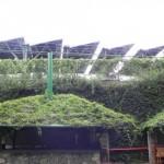Energía fotovoltaica aislada en el sector hotelero