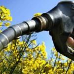 """La Unión Europea se protege del """"dumping"""" de biodiesel de Argentina e Indonesia con recargos arancelarios"""
