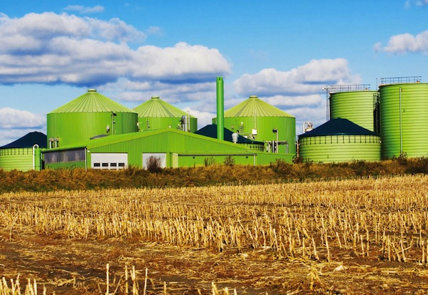 Planta-biogas
