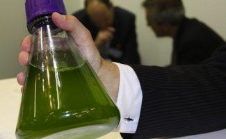 APPA rechaza la posible eliminación progresiva de los biocarburantes en la legislación europea
