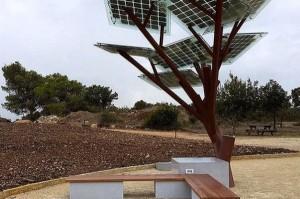Arboles-solares_MDSIMA20141026_0064_21