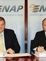 DF desarrollará una planta de cogeneración a gas natural en Chile por 106 millones de euros