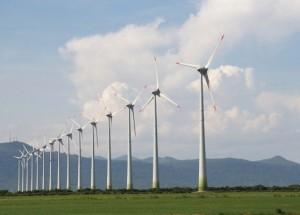 La eólica europea pide a la UE más acción en los países que regulen en contra de las renovables