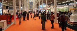 Arranca hoy la edición 2015 de Expo Biomasa, la feria del sector más importante de España