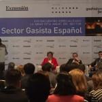 El sector del gas español marca su estrategia