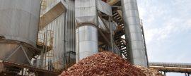 Declaradas de interés autonómico las plantas de biomasa en Zuera y Erla, en Aragón