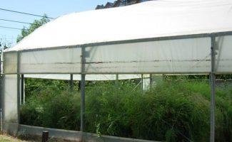 Climatizar invernaderos con energía geotérmica