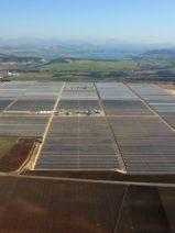 Torresol Energy concede 11 becas para estudiantes en sus plantas de San José del Valle