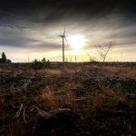 Vestas recibe un pedido de 100 MW en Argentina