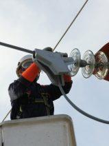 Nuevo sistema de protección para que las aves no mueran en tendidos eléctricos