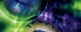 La AIE destaca el avance de la eólica, la fotovoltaica, el almacenamiento y el vehículo eléctrico