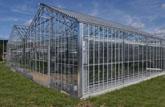 Se logra la rentabilidad en los invernaderos mediante energía geotérmica