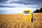 La industria del biodiesel argentino amenazada por las tasas del Gobierno