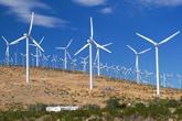 El PSOE entona el 'mea culpa' y advierte al Gobierno del fin de las renovables