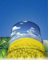 La UE pide a España que permita a Argentina exportar su biodiesel