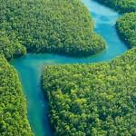 Día de la Tierra: el hombre y el cambio climático