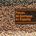 Bioplat presenta el primer inventario de plantas de producción de pélets