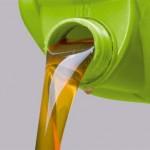 El uso de biocombustibles a debate en el Parlamento Europeo