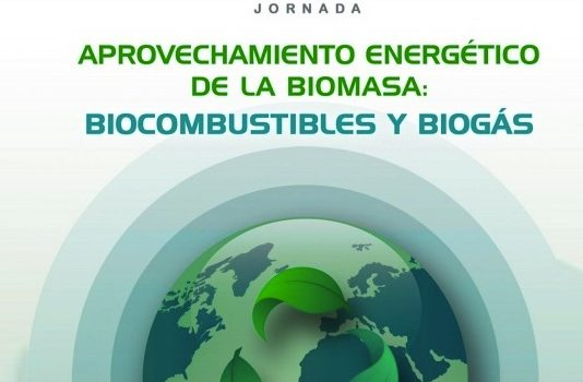 Jornada sobre la biomasa en Canarias, con un alto potencial de aprovechamiento energético