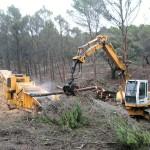 Crear empleo, evitar los incendios forestales y desarrollar la biomasa, conclusiones del manifiesto de Unión por la Biomasa