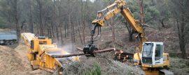 Andalucía es la Comunidad Autónoma que más biomasa consume