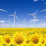 Pese al exceso de potencia en España, Industria anuncia levantar la moratoria renovable con 700 MW
