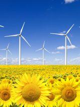 Cuando la eficiencia energética es el combustible