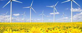 APPA convoca elI Congreso Nacional de Energías Renovablespara el 23 y 24 de octubre