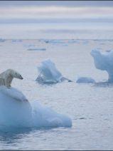 El acuerdo de la 20ª Cumbre de Cambio Climático alcanza unos acuerdos pobres que no convencen