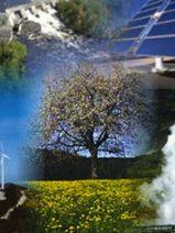 El sector renovable europeo insiste en la necesidad de que la nueva Directiva recoja la prioridad de red