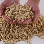 La biomasa recortaría el consumo energético y mejoraría la competitividad de las industrias agroalimentarias