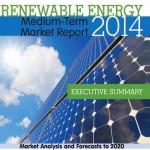La incertidumbre política podría frenar el impulso de las energías renovables, según la Agencia Internacional de la Energía
