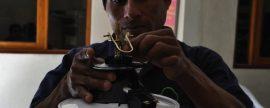 Productores de café en América Central generan energía con biogás a partir de los desechos del café