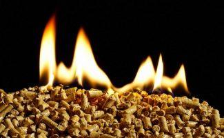 Ourense quiere liderar la industria de la biomasa de calidad y lanza su producto con sello de origen
