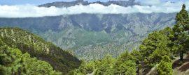 Red Eléctrica y el Cabildo canario de La Palma aúnan sus fuerzas para prevenir y luchar contra incendios forestales