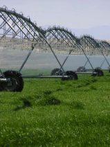 Integrar las políticas agrícolas y climáticas para producir más y emitir menos
