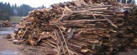 Sin políticas unificadas y sin cadenas de suministro transnacionales, el sector de la biomasa en la UE no despega