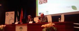 La financiación para la construcción sostenible y la eficiencia energética, a debate en Sevilla