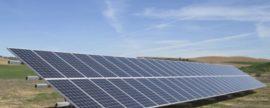El autoconsumo híbrido de fotovoltaica y biomasa para producir setas ahorra 6.600 euros al año