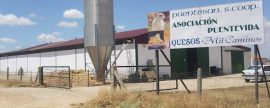 Energía Sin Fronteras pone en marcha una instalación fotovoltaica aislada de las más grandes de España