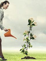Sale a la luz una nueva versión de la normativa ISO 14001 para la gestión ambiental