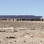 Los grandes agricultores de Australia invierten en bombeo solar fotovoltaico para riego