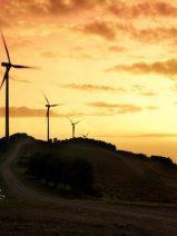 La eólica no alcanza la rentabilidad razonable prometida en la reforma energética