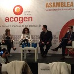 El sector de la Cogeneración solicita a los políticos un Plan Renove urgente